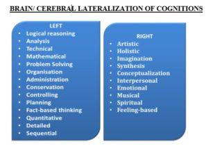 Cerebral Lateralization